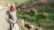 Coronavirus: Isolation a double-edged sword for West Bank's Bedouin herders