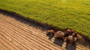أميركا قد تكشف عن مساعدات للمزارعين بـ15.5 مليار دولار