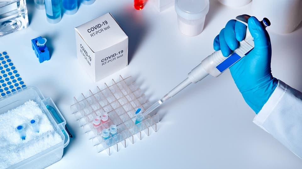راسات علمية حديثة تؤكد وجود طفرة جديدة من فيروس كورونا وتشرح مدى خطورته