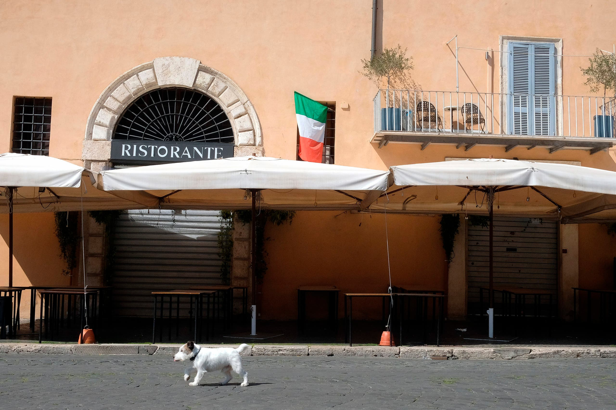 A dog passes by a closed restaurant as an Italian flag hangs from a window, in Rome on April 7, 2020. (AP)