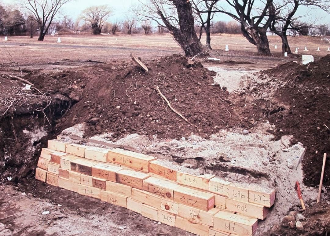 صورة لأحد مواقع الدفن القديمة بجزيرة هارت آيلاند