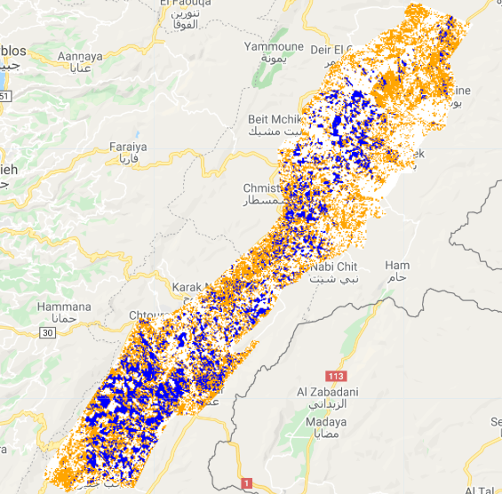 Satellite imagery shows cereal crop coverage of fields 0.5 hectares and larger (in blue) in Lebanon in 2019. (Supplied)
