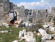 سوريا.. فصيل موالٍ لتركيا ينقب عن الآثار في عفرين