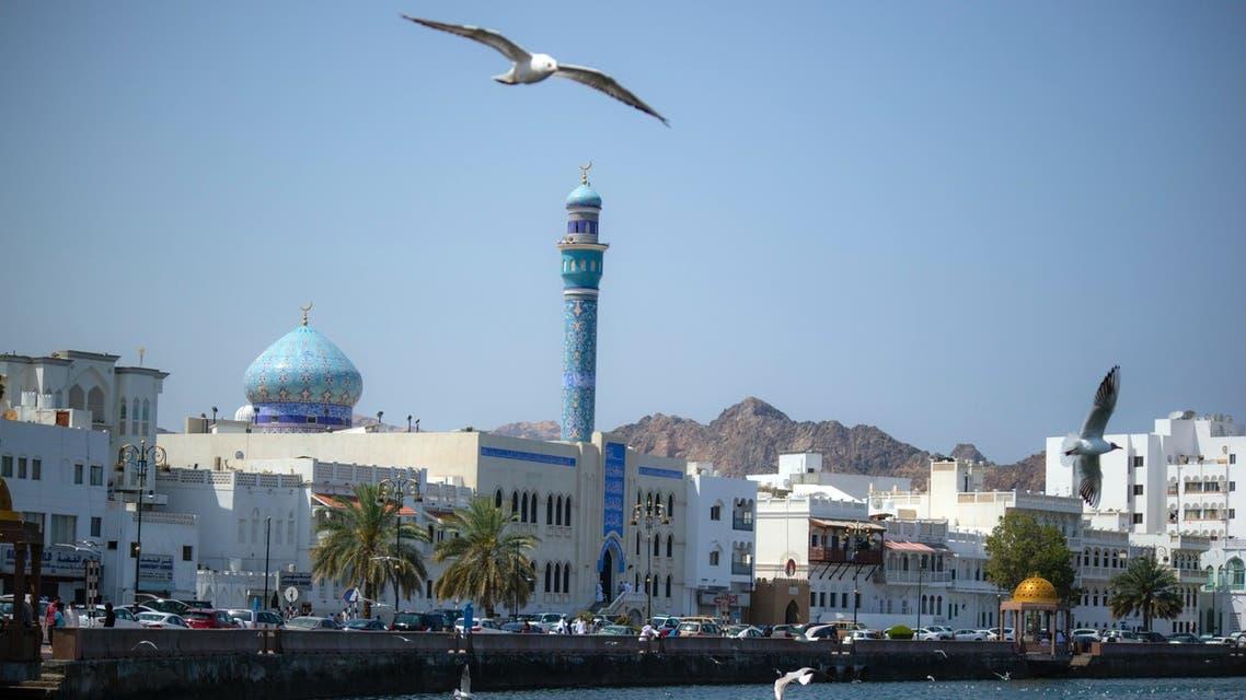 Gulls in Muscat, Oman. (Mostafa_meraji, Unsplash)