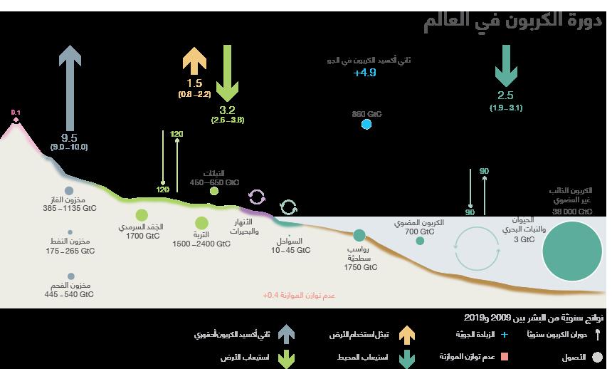 في الآلية العضوية، توفِّر بعض النظم البيئية الأخرى تخزيناً عالي الكثافة للكربون، وتشمل هذه الأراضي الرطبة الساحلية عن طريق أشجار المانغروف كما على جزر فرسان في إمارة جازان بالمملكة العربية السعودية