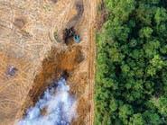 ما هي مغاطس الكربون الطبيعية؟