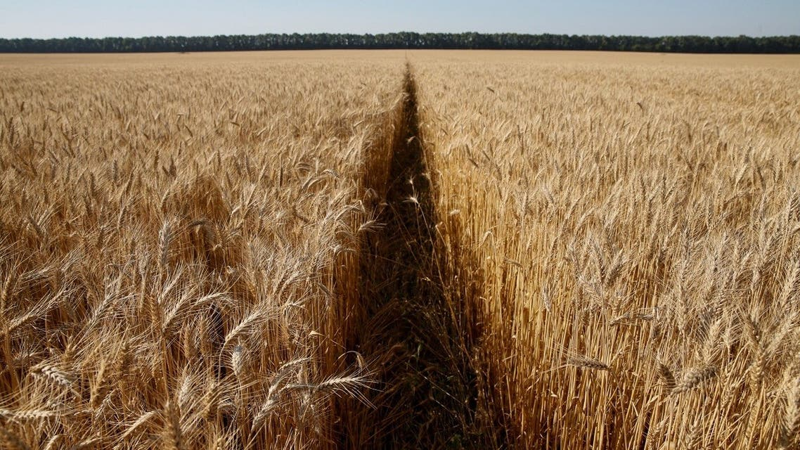SAUDI-WHEAT-UKRAINE-SALIC- Reuters