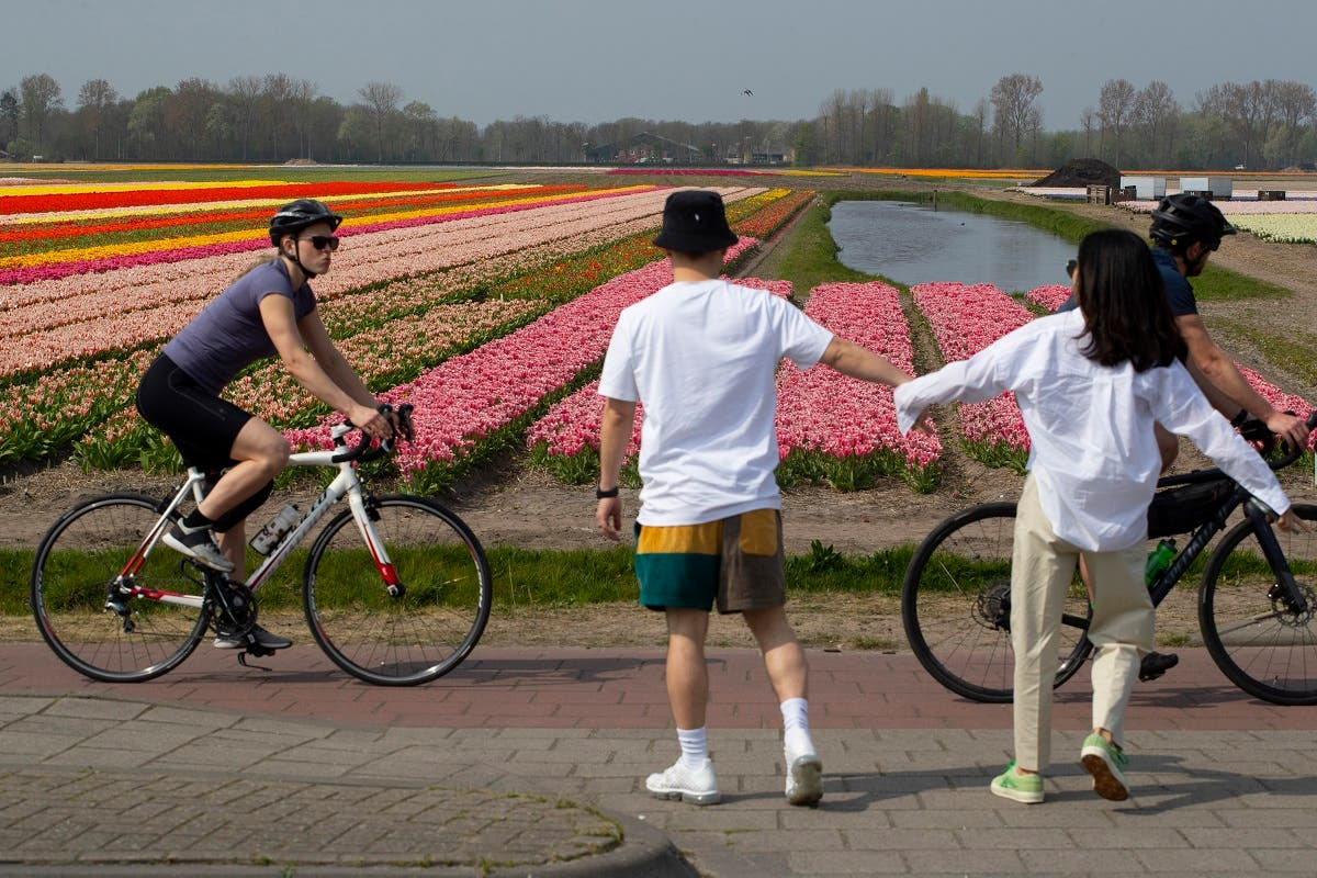 A couple stops walking to observe social distancing from passing cyclists on the main road in Lisse, Netherlands. (AP)