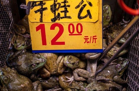 من أسواق الصين