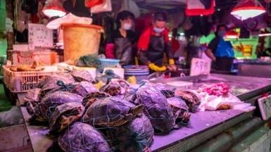 الصين تغري مواطنيها للتخلي عن حيوانات مسببة لـ كورونا