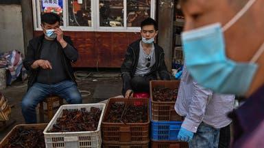 الصحة العالمية: لا يجب غلق أسواق الحيوانات رغم وباء كورونا