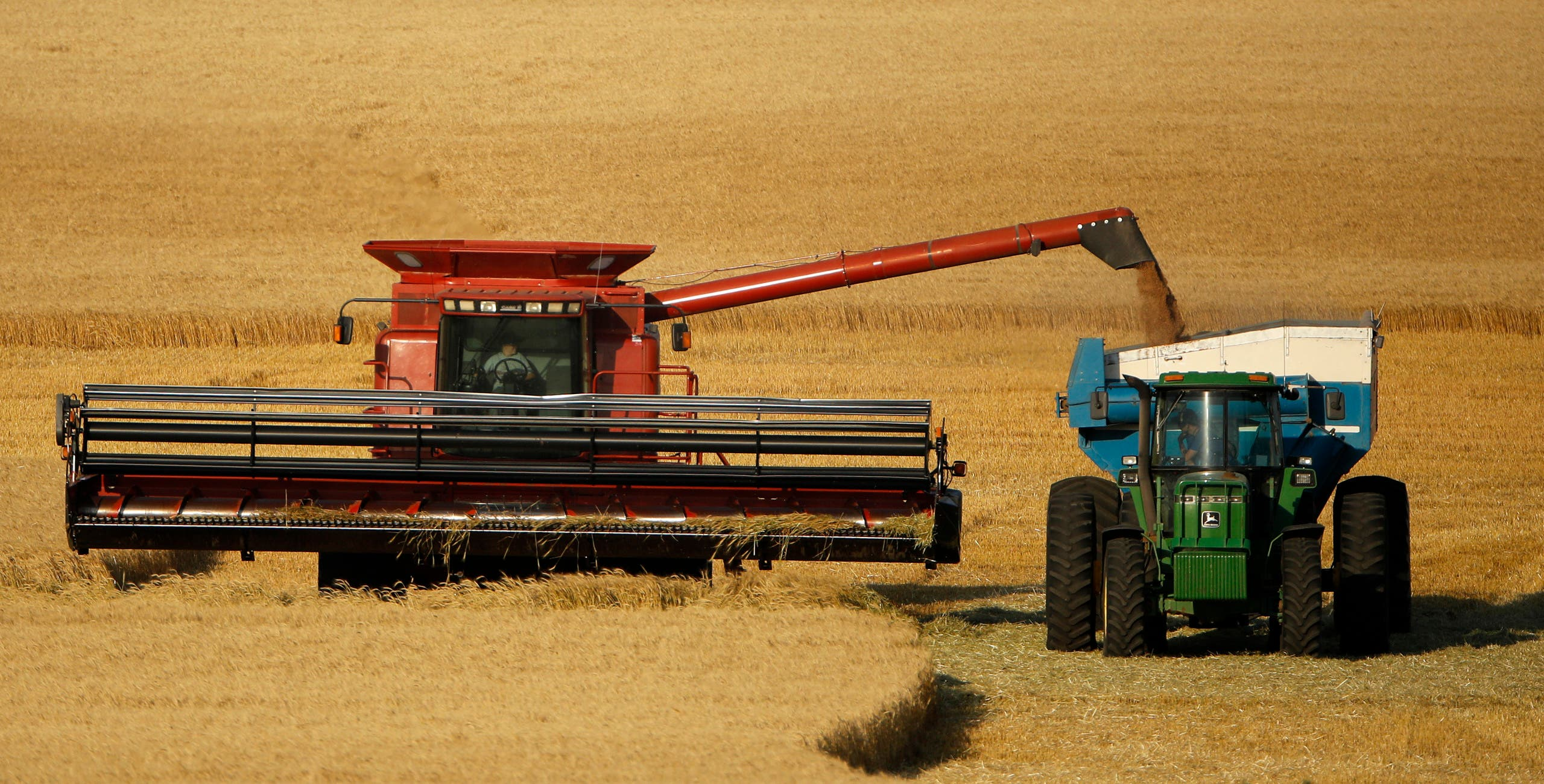 In this June 15, 2018 photo, winter wheat is harvested in a field farmed by Dalton and Carson North near McCracken, Kansas, US. (File photo: The Associated Press)
