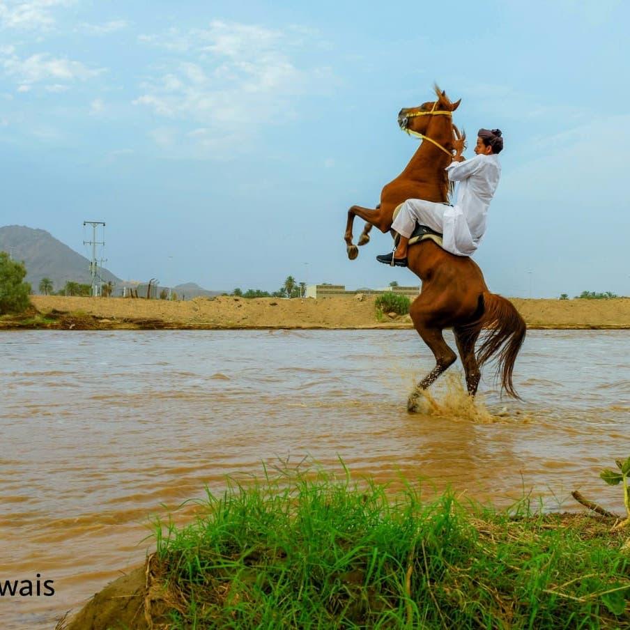 السعودية.. هكذا خطفت عدسات المصورين أمطار نجران