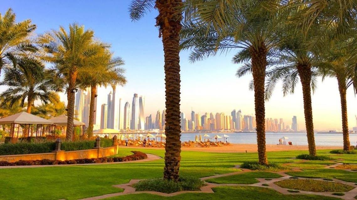 Palm trees against the Dubai skyline at Fairmont the Palm - Dubai. (Unsplash, @ekovu)