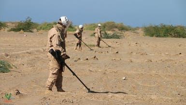 """اليمن.. """"مسام"""" ينزع أكثر من 2700 لغم حوثي في أسبوع"""