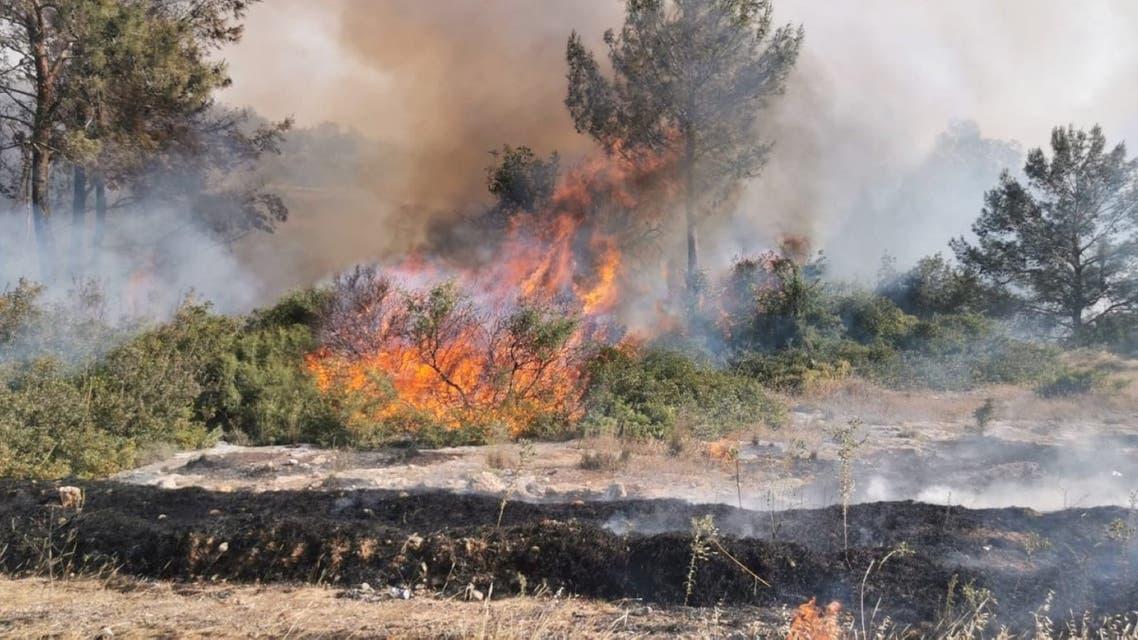 حرائق الغابات في الشطر الشمالي من قبرص
