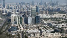 Abu Dhabi Executive Council sets up council to review free zone regulations