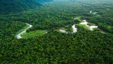 مع الاحترار المناخي.. غابات مدارية قد تبعث كربونا بالجو