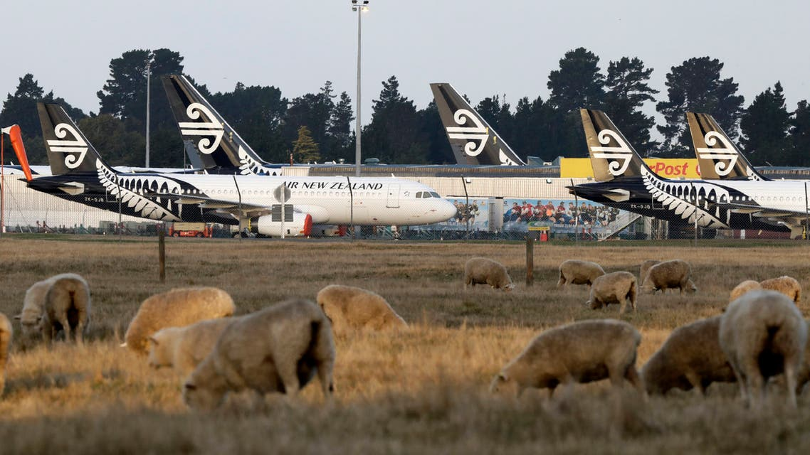 Air New Zealand planes sit parked on the tarmac as sheep graze in a nearby field at Christchurch Airport in Christchurch, New Zealand, on Wednesday, May 20, 2020. (AP)