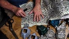 Coronavirus: Florida man makes masks out of python, iguana skin