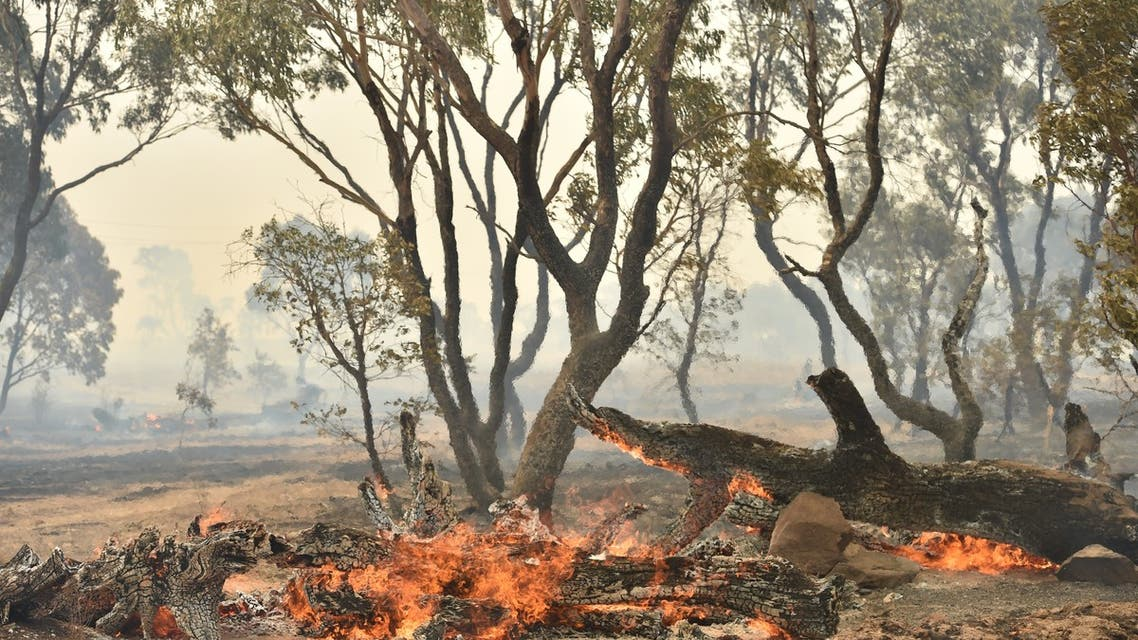 A bushfire burns near the town of Bumbalong, south of Canberra on February 2, 2020. A fire that threatened Canberra's southern suburbs was downgraded early on February 2, allowing firefighters to strengthen containment lines and protect residents.