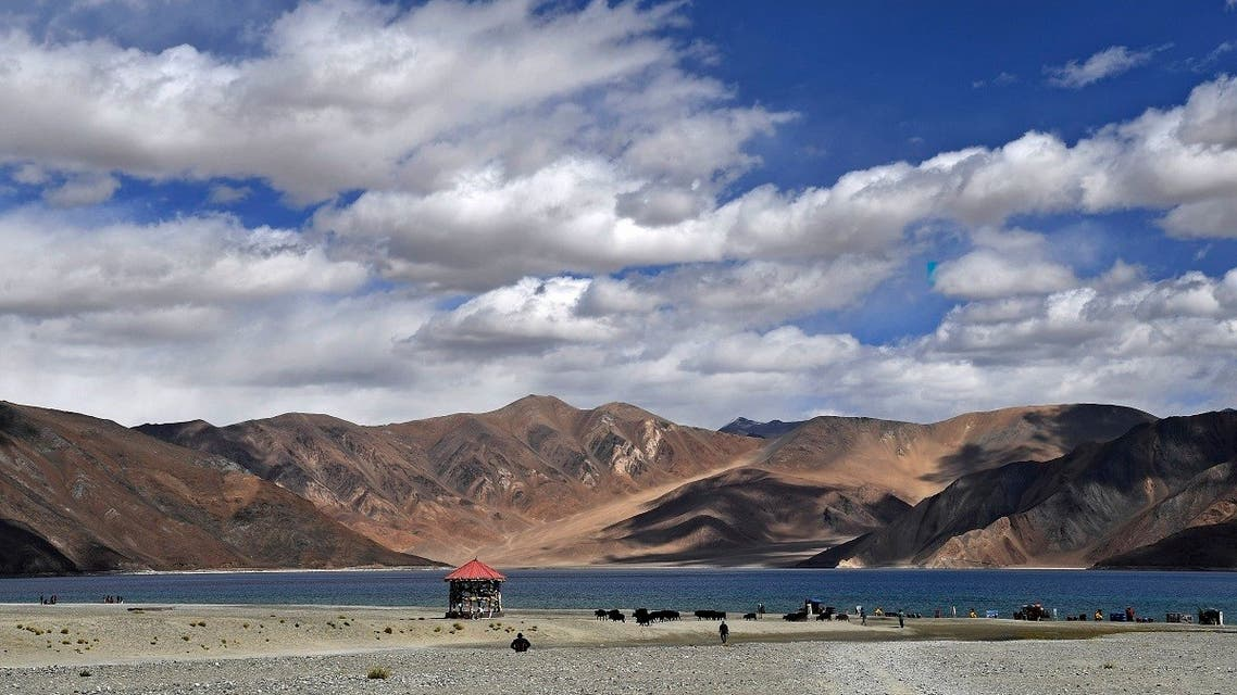 This photo taken on September 14, 2018, shows tourists taking selfies as cows gaze in front of the Pangong Lake in Leh district of Union terrritory of Ladakh bordering India and China. (AFP)