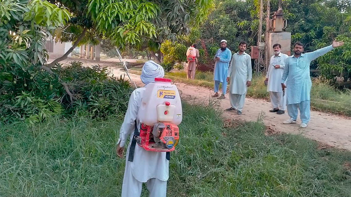 Farmers spray insecticide in a mango tree orchard in Muzaffargarh, Pakistan, Friday, May 29, 2020. Pakistani officials say an outbreak of desert locusts is spreading across the country posing a threat to food security. (AP)