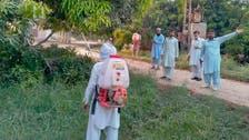 Locust invasion hits Pakistan's crops, orchards