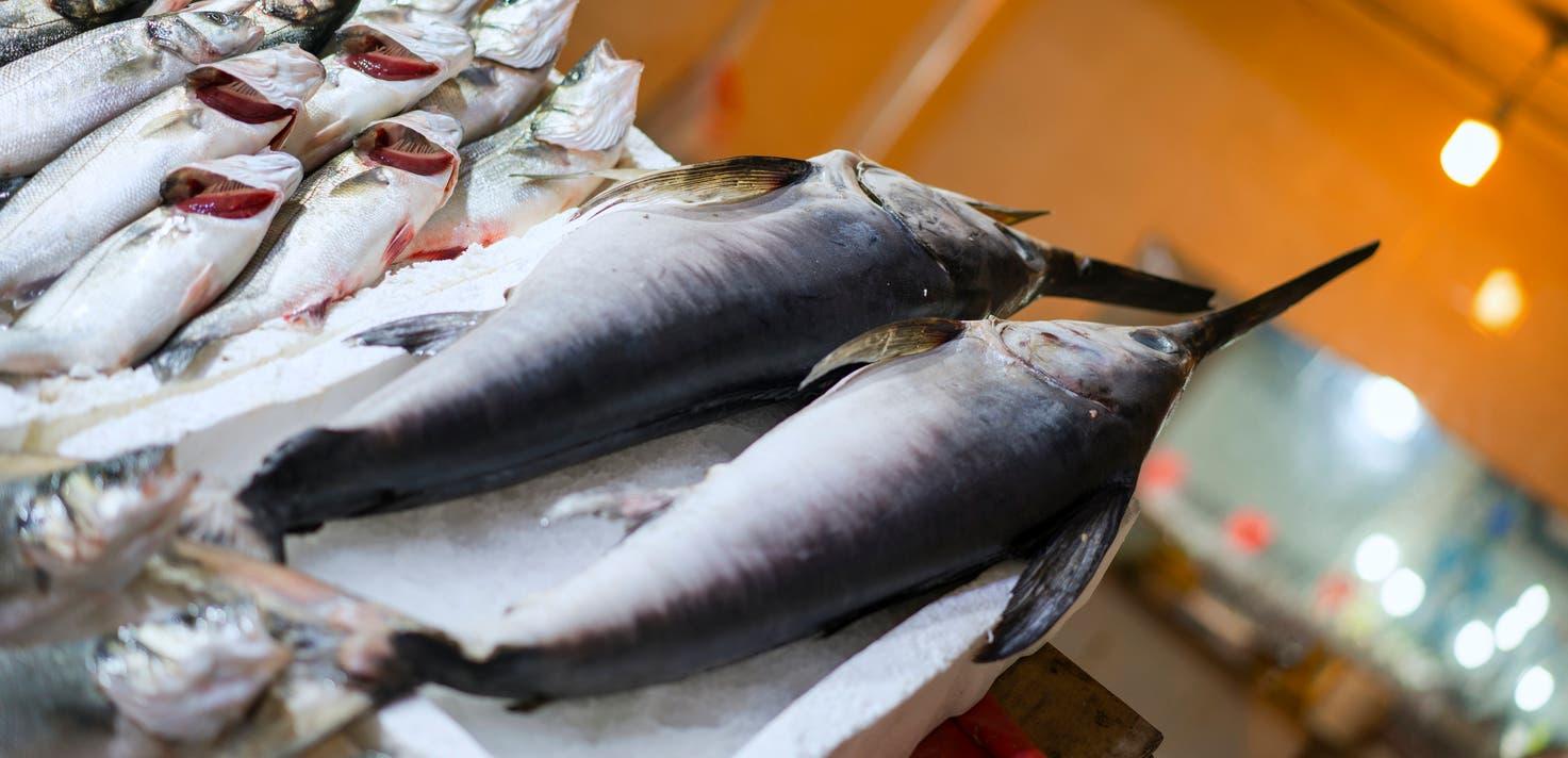 سمك أبو سيف