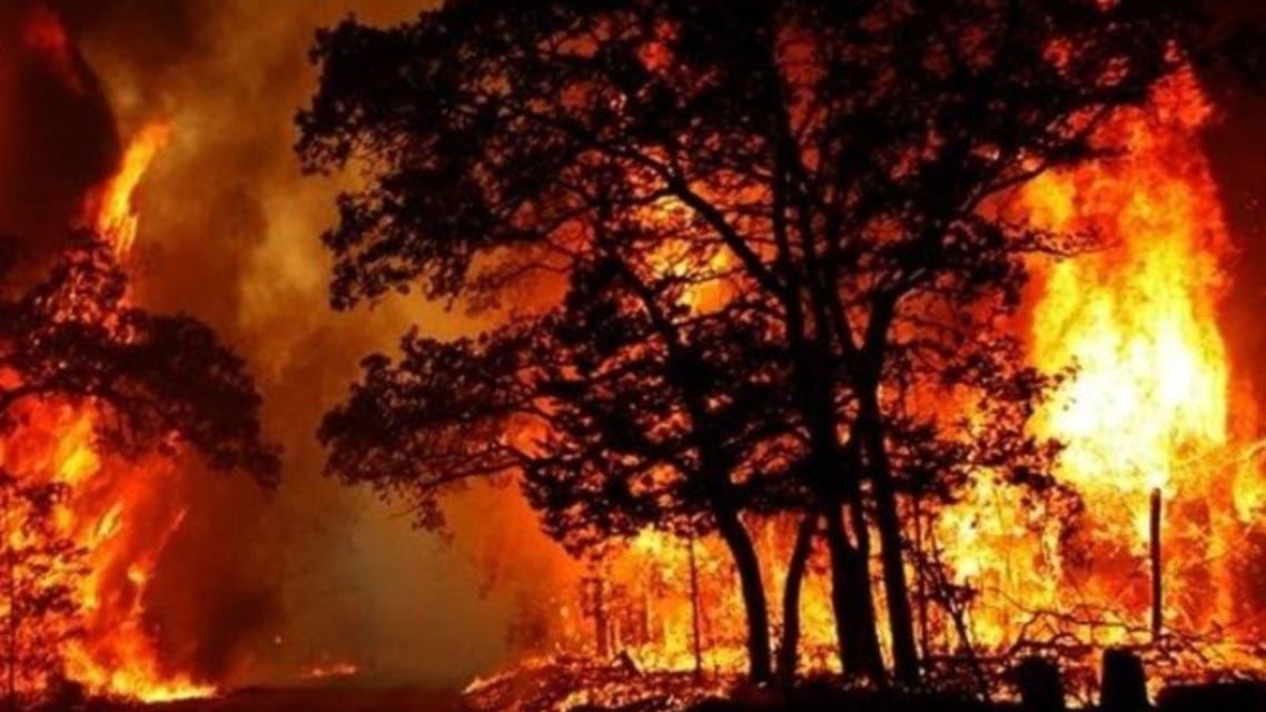 ادامه آتشسوزی وسیع جنگلهای خائیز در کهگیلویه و بویراحمد
