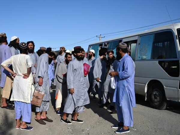 تقرير سري يكشف.. سجناء طالبان يعودون إلى جبهاتهم