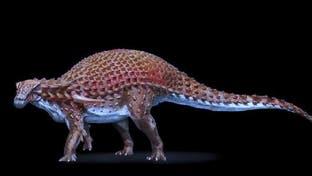 هذا آخر ما التهمه ديناصور قبل موته منذ 110 ملايين سنة