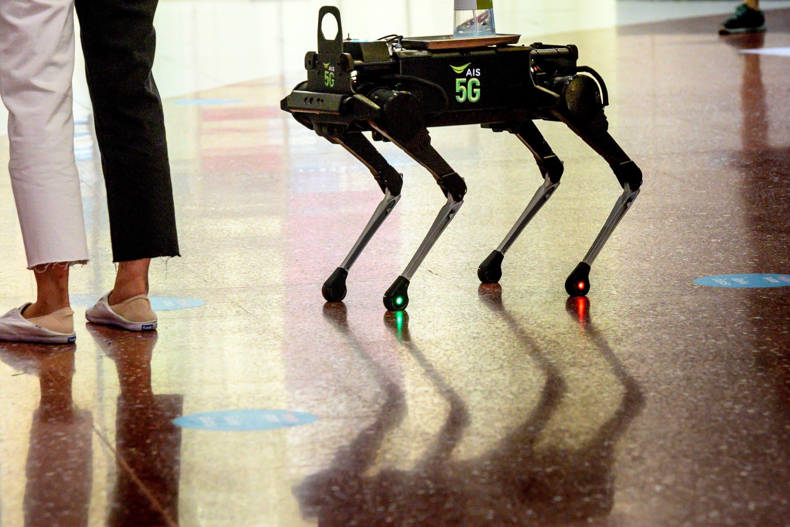 """الروبوت """"كاي 9"""""""