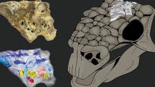"""""""برّدت أدمغتها"""".. أول نموذج ثلاثي الأبعاد لديناصورات"""