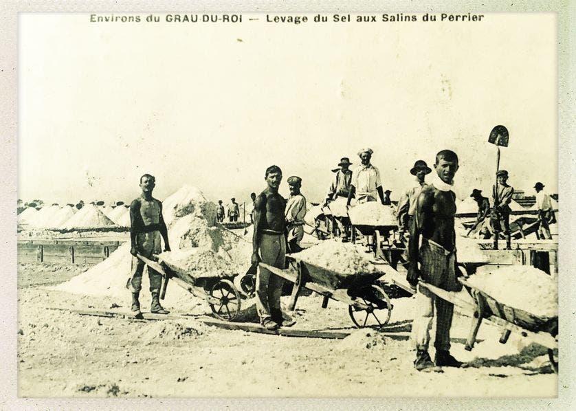 صورة لعدد من العمال بإحدى الملاحات أواخر القرن 19