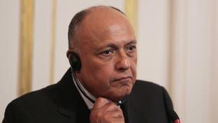 شكري: سنحمي حقوق مصر المائية بالمفاوضات