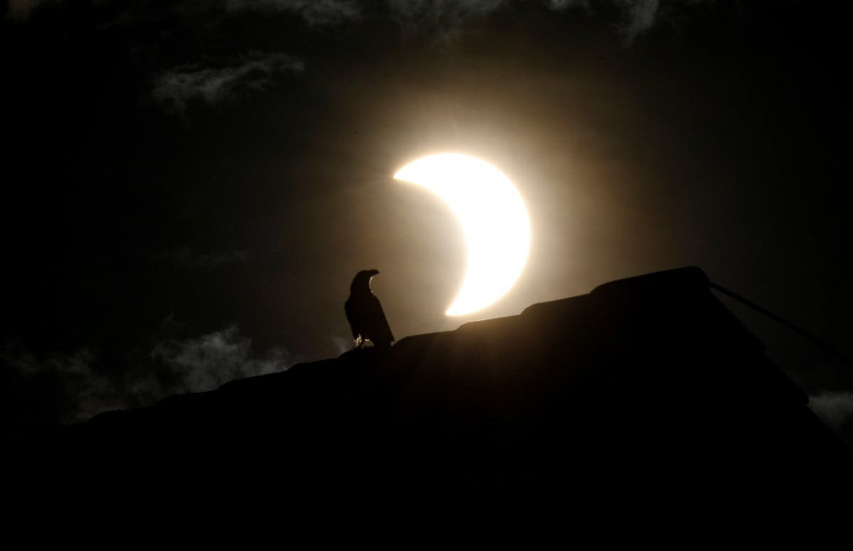 A crow stands on a roof as a partial solar eclipse is observed in Nairobi, Kenya, June 21, 2020. (Reuters)