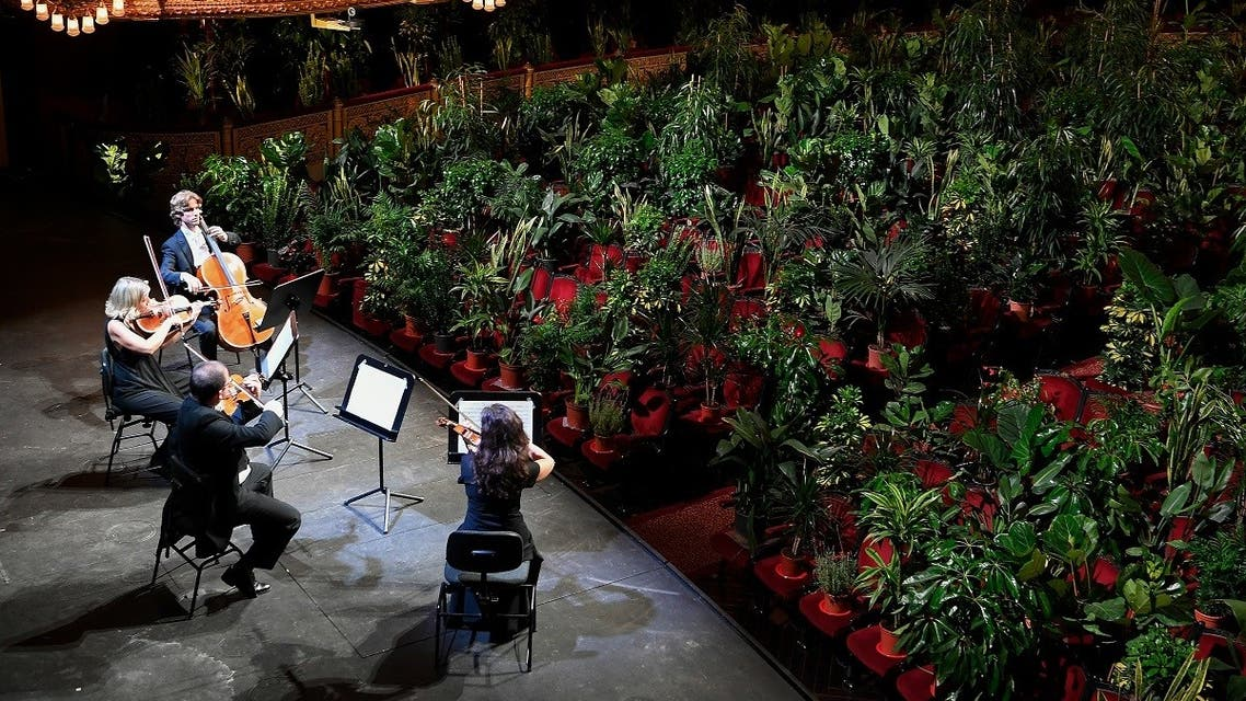 The Uceli Quartet perform for an audience made of plants during a concert created by Spanish artist Eugenio Ampudia and that will be later streamed to mark the reopening of the Liceu Grand Theatre in Barcelona on June 22, 2020 (AFP)The Uceli Quartet perform for an audience made of plants during a concert created by Spanish artist Eugenio Ampudia and that will be later streamed to mark the reopening of the Liceu Grand Theatre in Barcelona on June 22, 2020 (AFP)