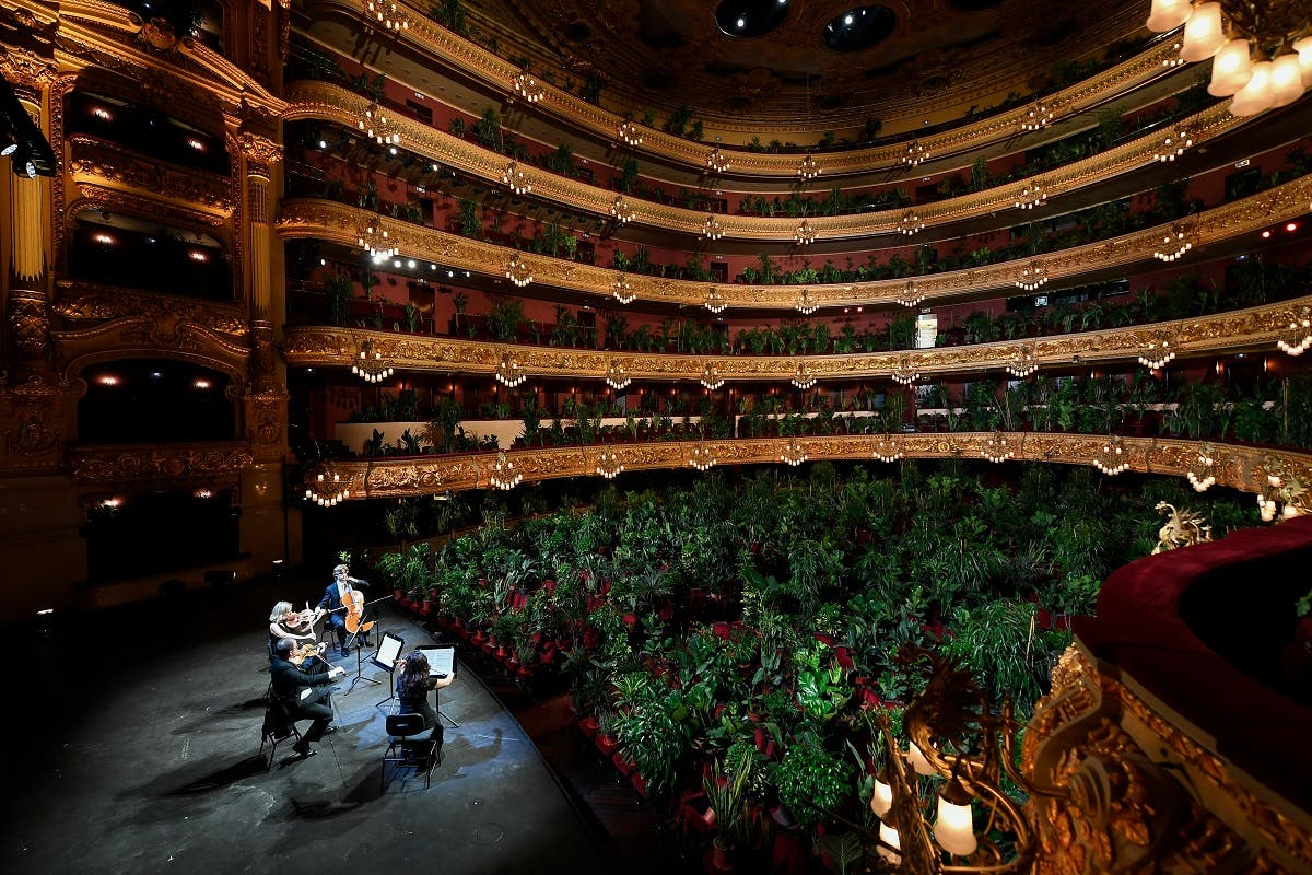 The Uceli Quartet perform for an audience made of plants during a concert created by Spanish artist Eugenio Ampudia. (AFP)