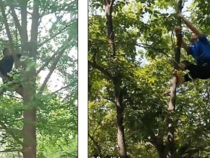 شاهد رجلاً يمشي كالقرود:  حمتني من الأمراض لثلاثة عقود