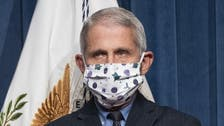 Coronavirus: Entire US still at risk after spike in virus numbers, warns Fauci
