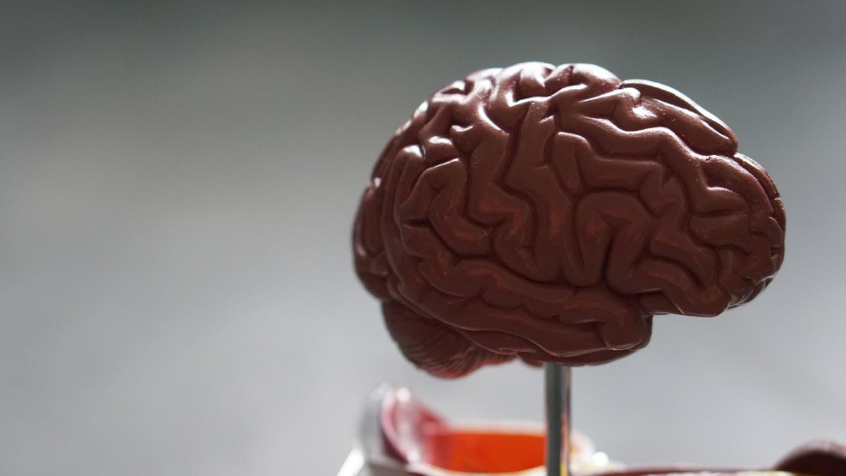 Severe COVID-19 could cause brain changes, increase risk of Alzheimer's: Experts
