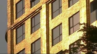 فندق مطلي بالذهب الخالص في فيتنام