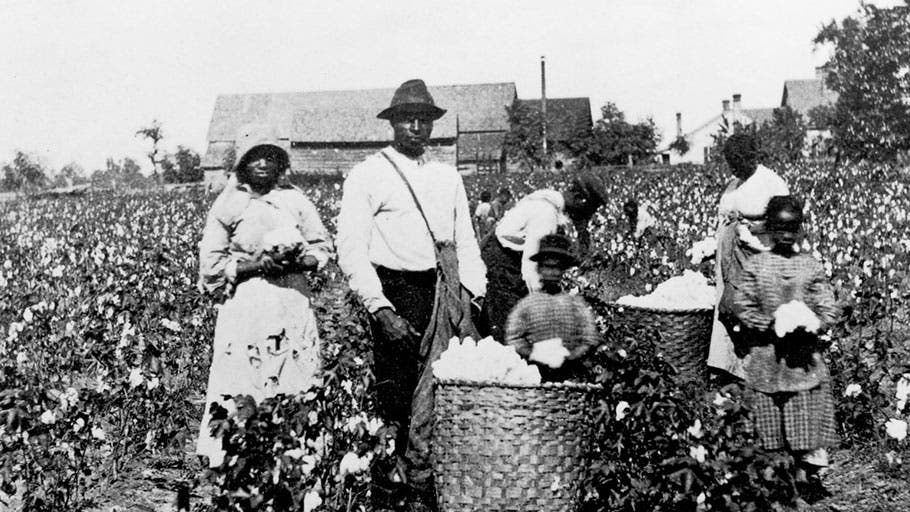 صورة لعدد من العبيد أثناء عمليات جمع القطن
