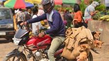 بھارتی ریاست ناگا لینڈ میں کتے کے گوشت کی خرید وفروخت پر پابندی