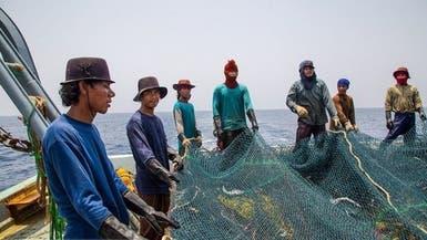 کشتیهای ماهیگیری چینی در آبهای خلیج صیادی را دو دهه عقب بردهاند
