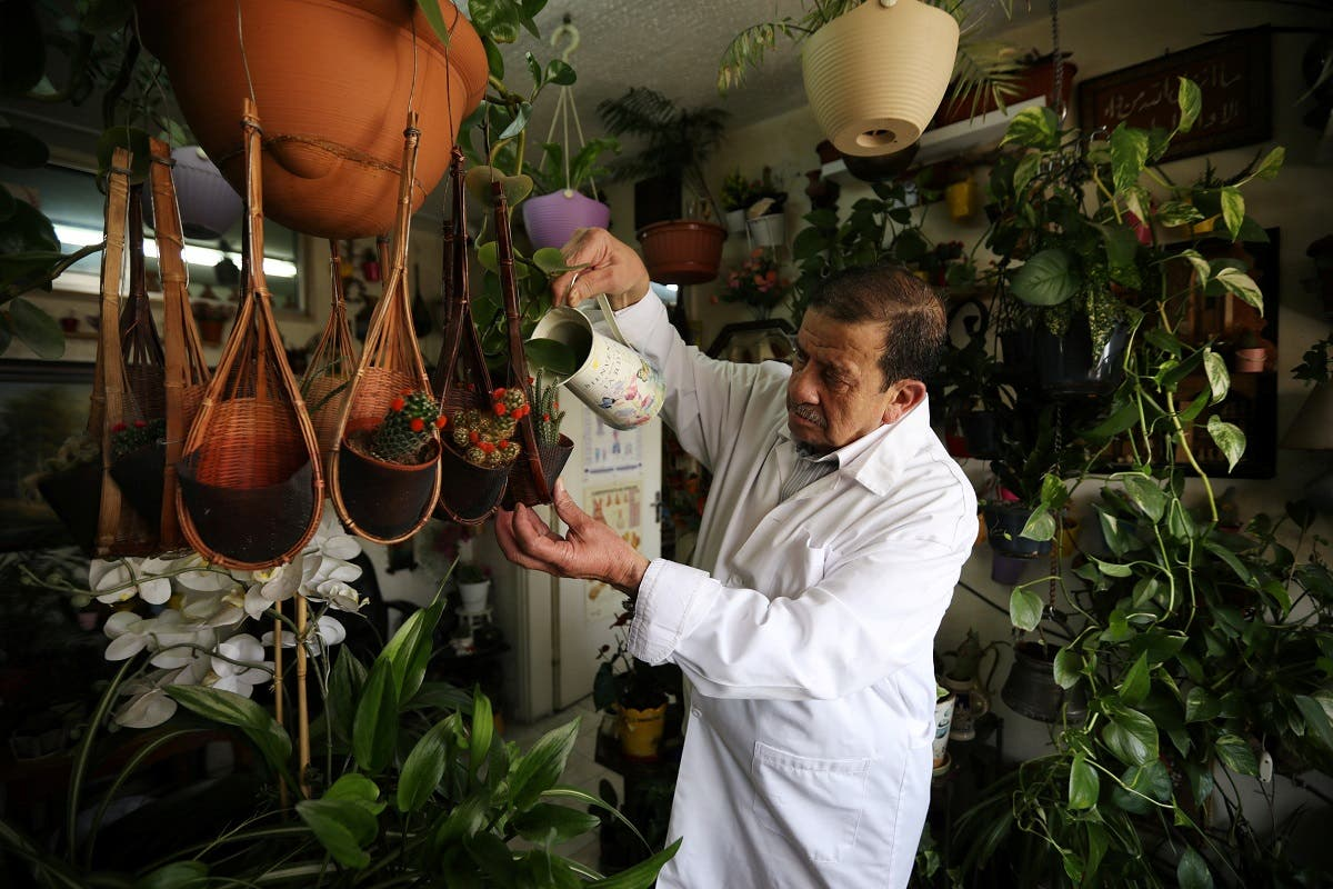 Jordanian doctor Nizar al Halaby waters his plants inside his clinic in Amman, Jordan, July 5, 2020. (Reuters)