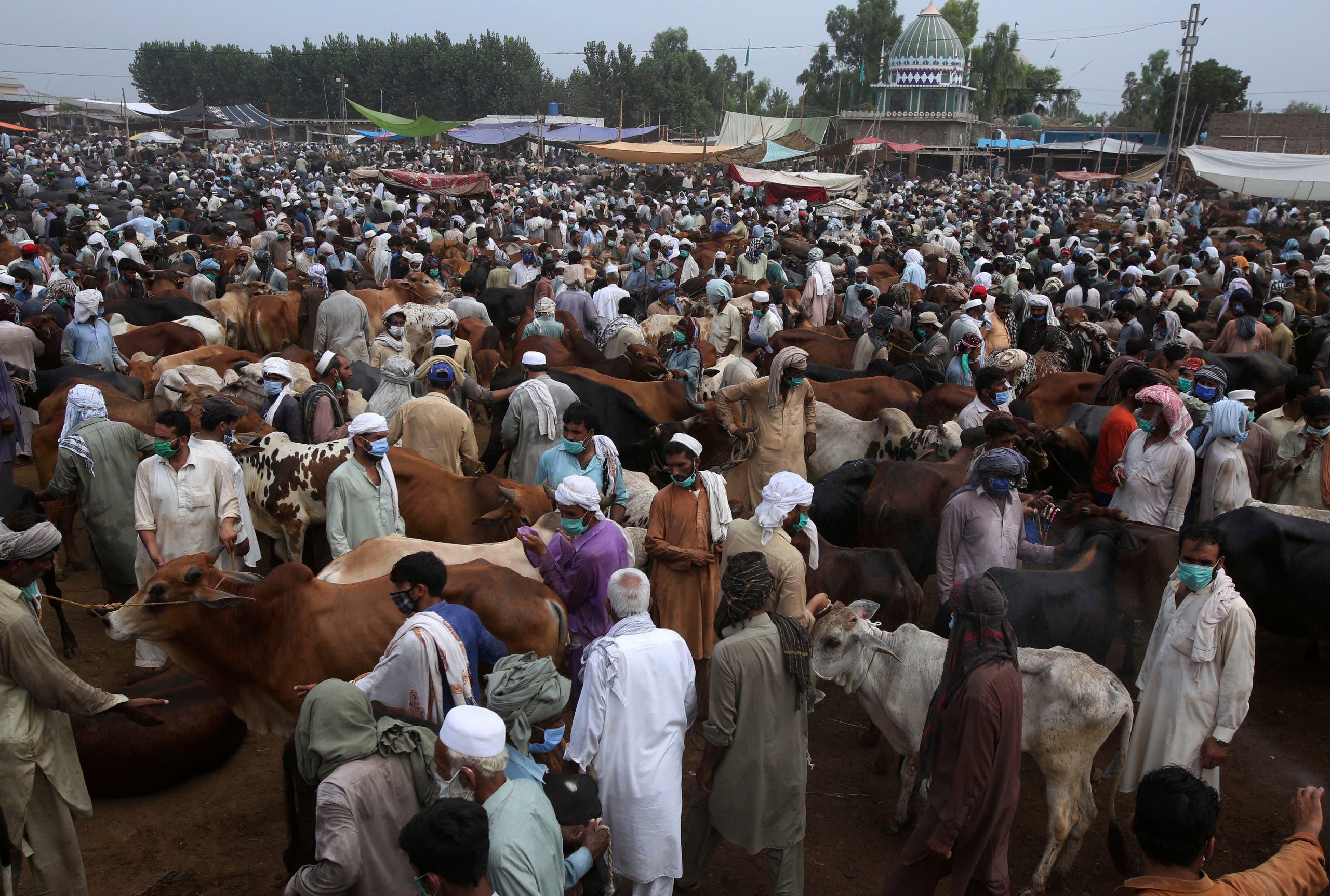 A livestock market in Peshawar, Pakistan, July 4, 2020, ahead of Eid al-Adha. (AP)