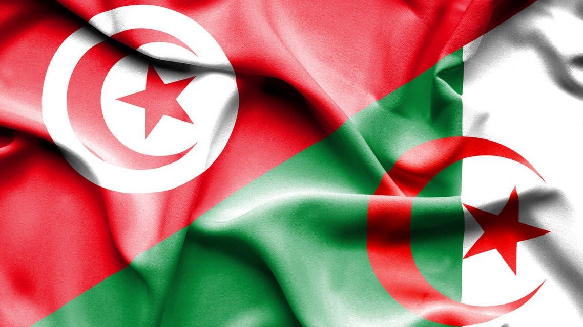 Waving flag of Algeria and Tunisia stock illustration