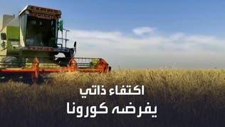 كورونا ينعش سوق الفاكهة العراقية